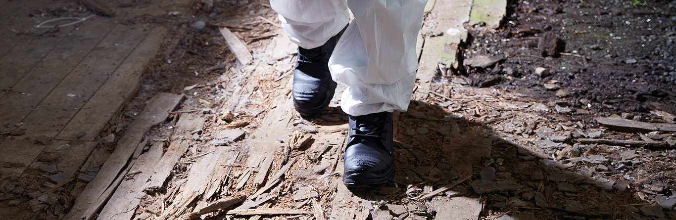 Why wear Safety Shoes?